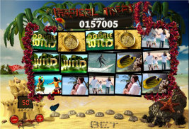 Play casino games such as Tropical Treat at WinADayCasino.eu!